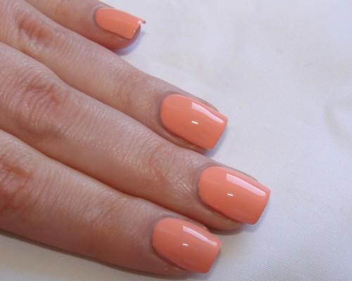 np_peach melba2